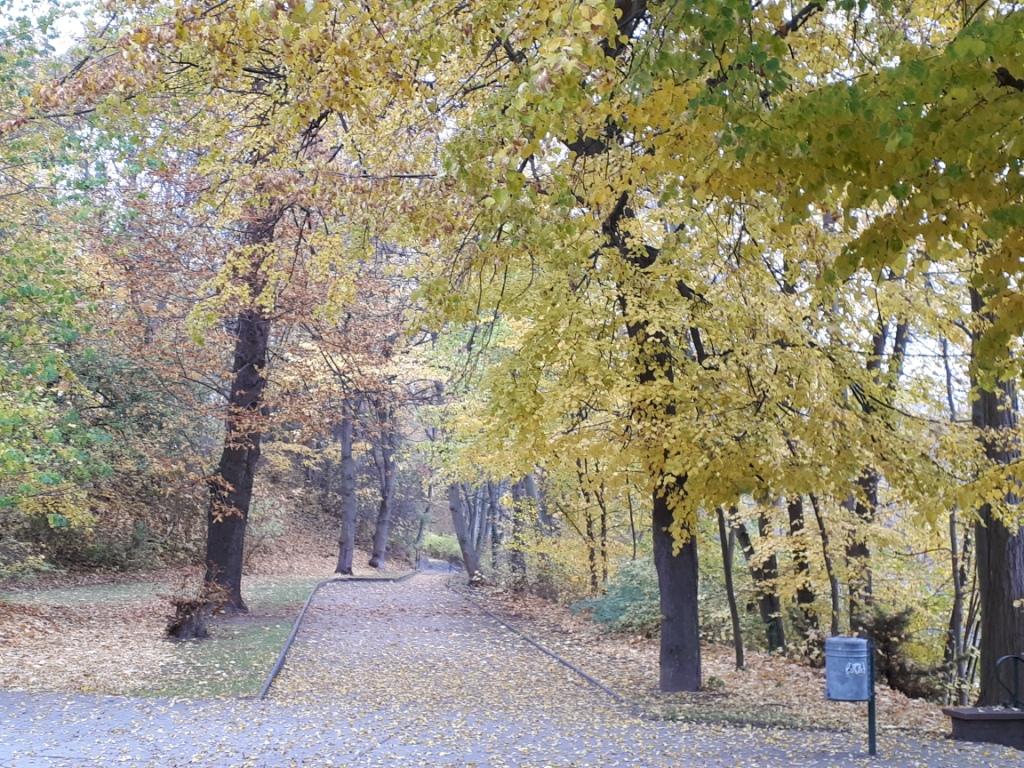 Goldener November in Granschütz